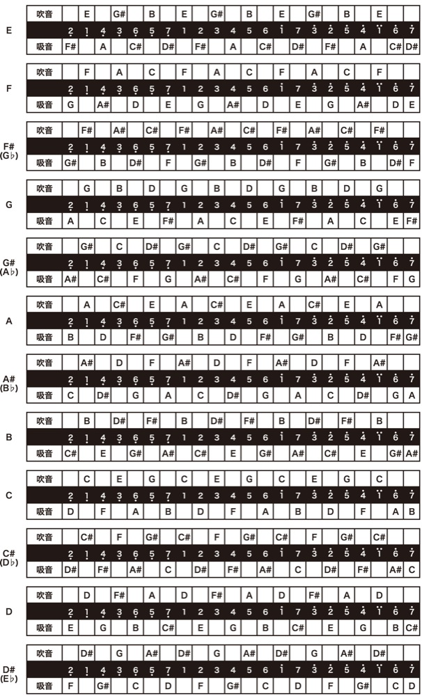 TOMBO NO.1722//G# Professional 22 holes TREMOLO HARMONICA